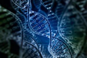 Что такое миодистрофия причины и эффективные методы лечения