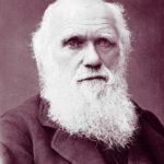 Дарвин Диагноз
