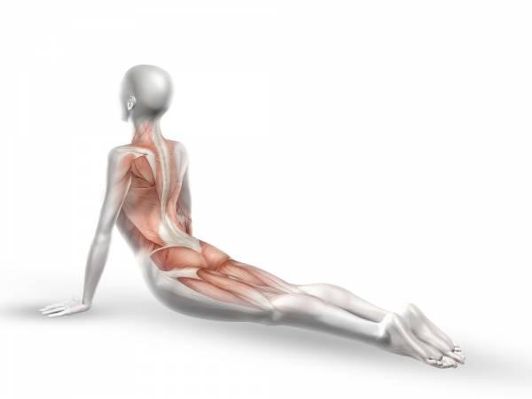 Йога для боли в спине