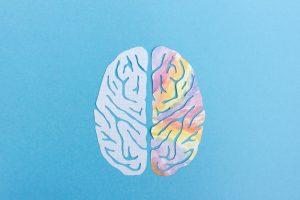 Левый мозг и правое полушарие головного мозга, представленные иллюстрацией с простыми и красочными сторонами мозга на синем фоне.