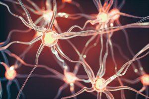 Концептуальная иллюстрация нейронов